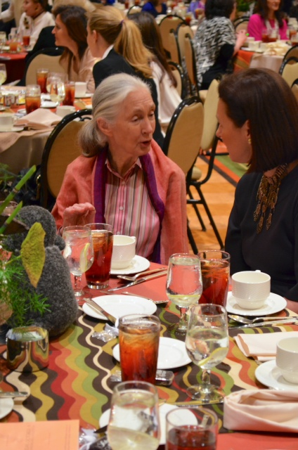 Jane Goodall1 Womens Health Summit