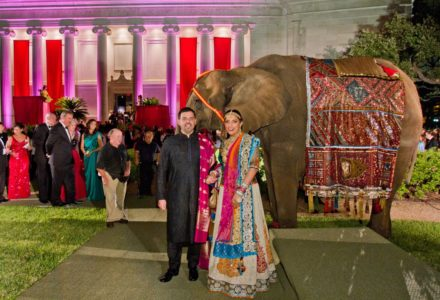 An Elephant, Stunning Saris and Turbans! MFAH's Grand Gala Welcomes INDIA!