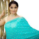 The Sari Saga